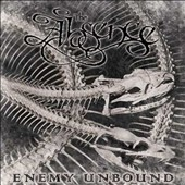 The Absence: Enemy Unbound *