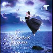 David Wahler: Secret Dream