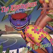 The Rippingtons: Life in the Tropics
