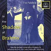 In the Shadow of Brahms - Trios for clarinet, cello and piano by Brahms, Juon and Zemlinsky / Trio Paideia