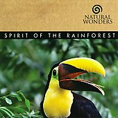 David Arkenstone: Spirit of the Rain Forest