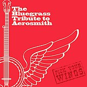 Various Artists: Bluegrass Tribute to Aerosmith