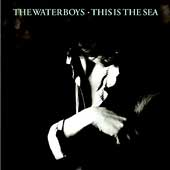 The Waterboys: This Is the Sea [Bonus CD] [Remaster]