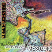 Birdsongs of the Mesozoic: Petrophonics