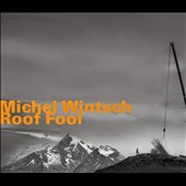 Michel Wintsch: Roof Fool