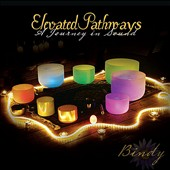 Bindy Laal Johnson: Elevated Pathways