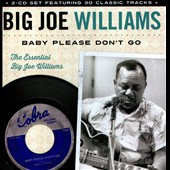 Big Joe Williams: Baby Please Don't Go: The Essential Big Joe Williams *