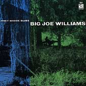 Big Joe Williams: Piney Woods Blues