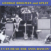 George Brigman: I Can Hear the Ants Dancin'