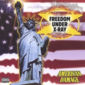Freedom Under X-Ray: American Damage