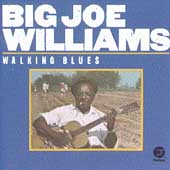 Big Joe Williams: Walking Blues