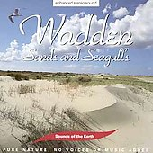 Various Artists: Sounds of the Earth: Wadden - Sands & Seagulls
