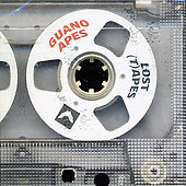 Guano Apes: Lost Tapes