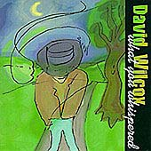 David Wilcox: What You Whispered