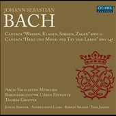 Bach: Cantatas BWV 12 and BWV 147 / Judith Spiesser, Annekathrin Laabs, Robert Sellier, Timo Janzen