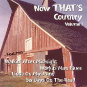 Various Artists: Now That's Country, Vol. 1