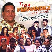 Troy Fernandez: Collaboration, Vol. 1