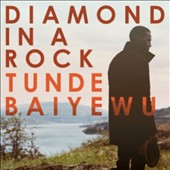 Tunde Baiyewu: Diamond in a Rock