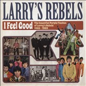 Larry's Rebels: I Feel Good: The Essential Purple Flashes of Larry's Rebels 1965-1969 *