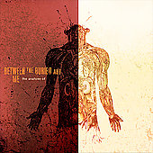 Between the Buried and Me: The Anatomy Of