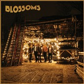 Blossoms (UK Indie): Blossoms *