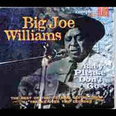 Big Joe Williams: Baby Please Don't Go [Snapper] [Digipak]