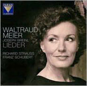 Strauss, Schubert: Lieder / Meier, Breinl