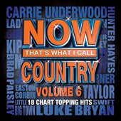 Various Artists: Now That's What I Call Country, Vol. 6 [6/11]