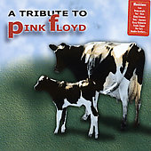 Various Artists: A Special Tribute to Pink Floyd