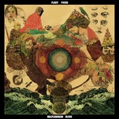Fleet Foxes: Helplessness Blues *