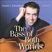 The Bass of Both Worlds