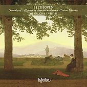 Beethoven: Serenade Op 25, etc / Gaudier Ensemble