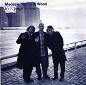 Medeski, Martin & Wood: It's a Jungle in Here