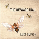 Walter Zimmermann: The Wayward Trail; David Doty: Steel Suite; Larry Polansky: Songs and Toods / Elliot Simpson, national reso-phonic just intonation tricone guitar