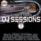 Various Artists: Ultimate Dance DJ Sessions, Vol. 1 [9/9]