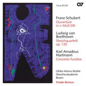 Schubert: Overture in C minor D 8;  Beethoven, Hartmann / Bernius, Math&eacute;, Bolzano String Academy