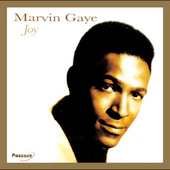 Marvin Gaye: Joy
