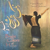Hamid Najafi: Bright Colors of Hope