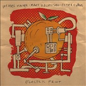 Weasel Walter/Peter Evans (Trumpet)/Mary Halvorson: Electric Fruit