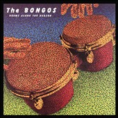 The Bongos: Drums Along the Hudson