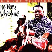 Big Joe Williams: No More Whiskey