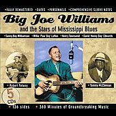 Big Joe Williams: Big Joe Williams and the Stars of Mississippi Blues [Box]