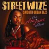 Streetwize: The Slow Jamz Album