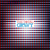 Various Artists: The Total Groovy [Box]