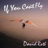 David Roth: If You Can't Fly